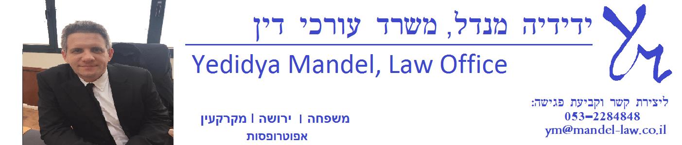 ידידיה מנדל, משרד עורכי דין